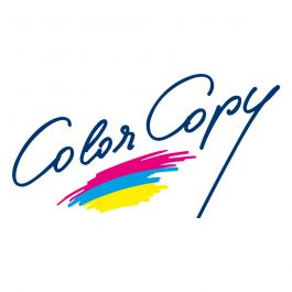 Color Copy 400 g/m² 320 mm x 450 mm BL