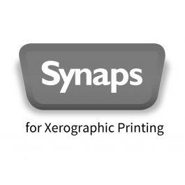Synaps XM wit 300 g/m² 320 mm x 450 mm 250 µ
